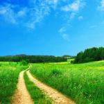 毎月最終日はそれまでの1ヶ月を振り返り翌月の目標を設定する日